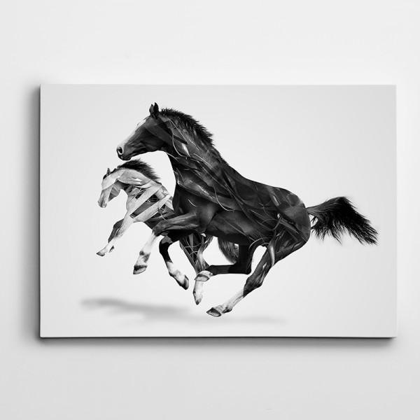 Atlar Kanvas Tablo