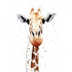 Hayvanlar Kanvas Tablo