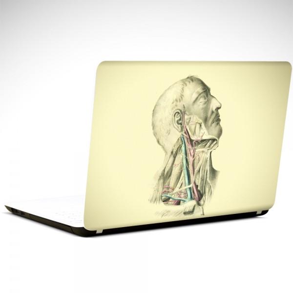 Anatomi Laptop Sticker