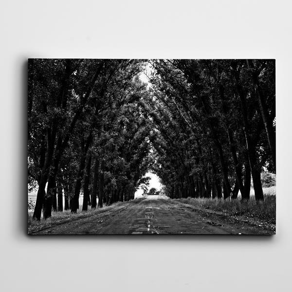 yol-ve-agaclar-kanvas-tablo